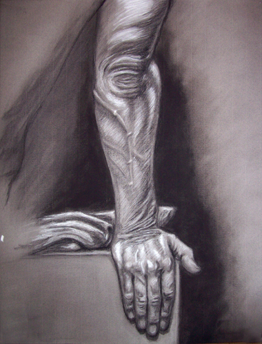 Image:  Copyright 2008, Jeff Curtis, All rights Reserved.  Art Anatomy - Charcoal and Conte' Crayon Drawing:  Surface Anatomy Study - Fall 2008.